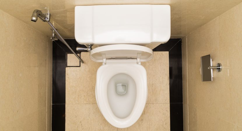 When To Stick Your Hand in the Toilet